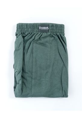 Cueca-Samba-Cancao-Verde-Militar-Masculina-Plus-Size--2-