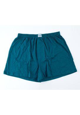 Cueca-Samba-Cancao-Verde-Masculina-Plus-Size